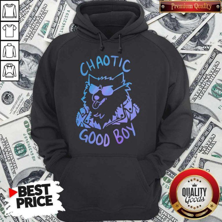 Nice Chaotic Good Boy Hoodie