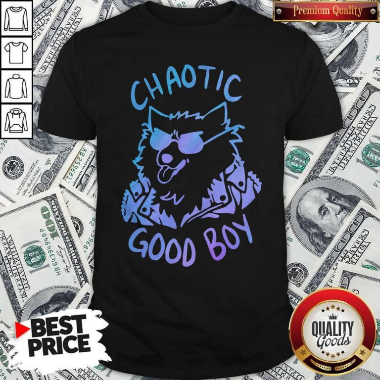 Nice Chaotic Good Boy Shirt
