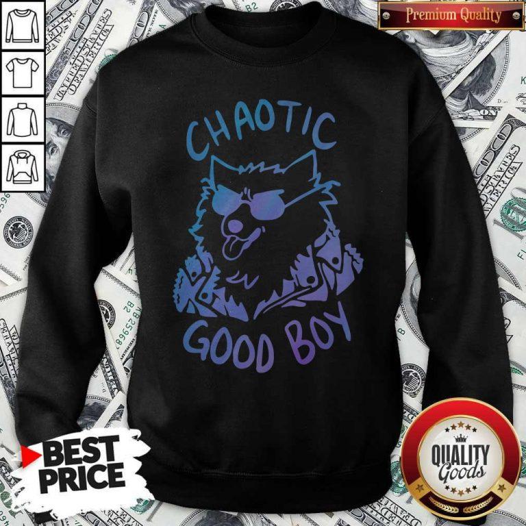 Nice Chaotic Good Boy Sweatshirt