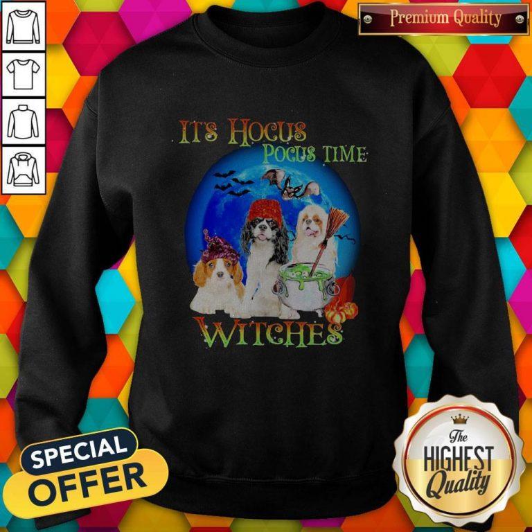 Shih Tzu Dogs It's Hocus Pocus Time Witches Halloween Sweatshirt