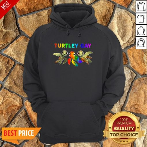 Nice LGBT Turtley Gay LGBT Month Hoodie