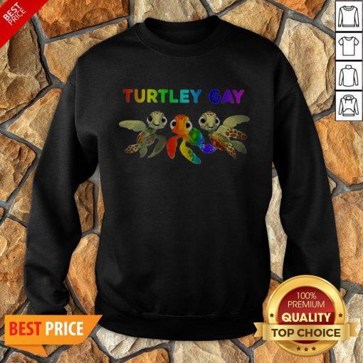 Nice LGBT Turtley Gay LGBT Month Sweatshirt