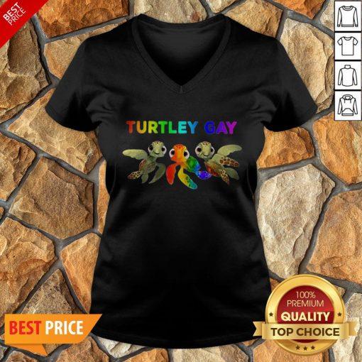 Nice LGBT Turtley Gay LGBT Month V-neck