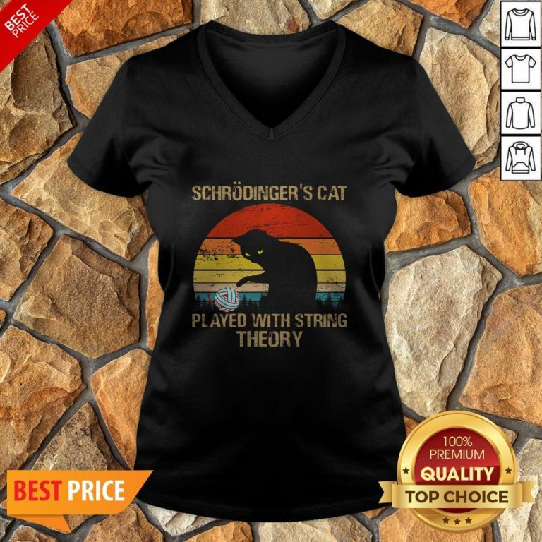 Schrodinger's Cat Played With String Theory Vintage V-neck