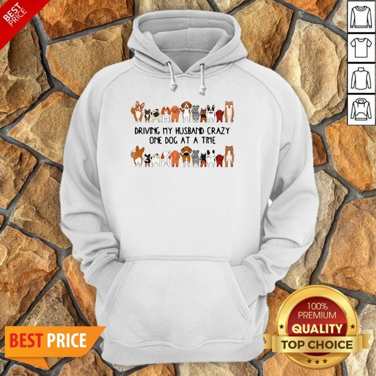 Driving My Husband Crazy One Dog At A Time Hoodie