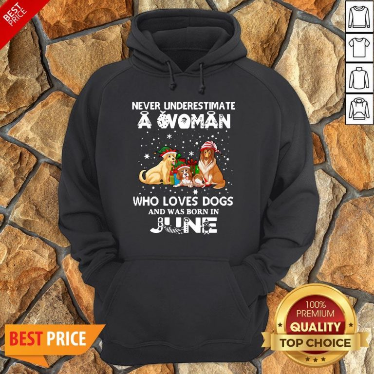 Never Underestimate A Woman Who Loves Dogs And Was Born In June Hoodie