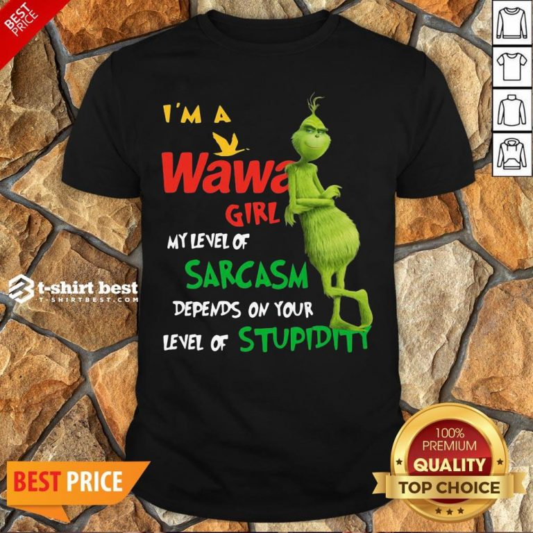 Grinch I'm A Wawa Girl My Level Of Sarcasm Depends On Your Level Of Stupidity Shirt