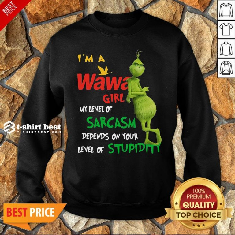 Grinch I'm A Wawa Girl My Level Of Sarcasm Depends On Your Level Of Stupidity Sweatshirt