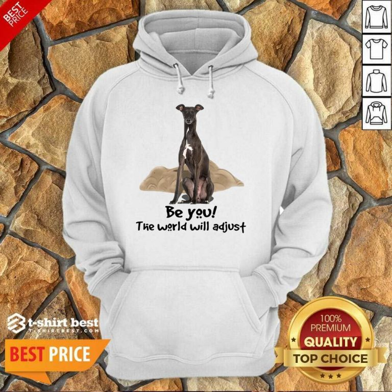 Top Greyhound Be You The World Will Adjust Hoodie