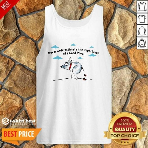 Never Underestimate The Importance Of A Good Poop Tank Top - Design By 1tees.com