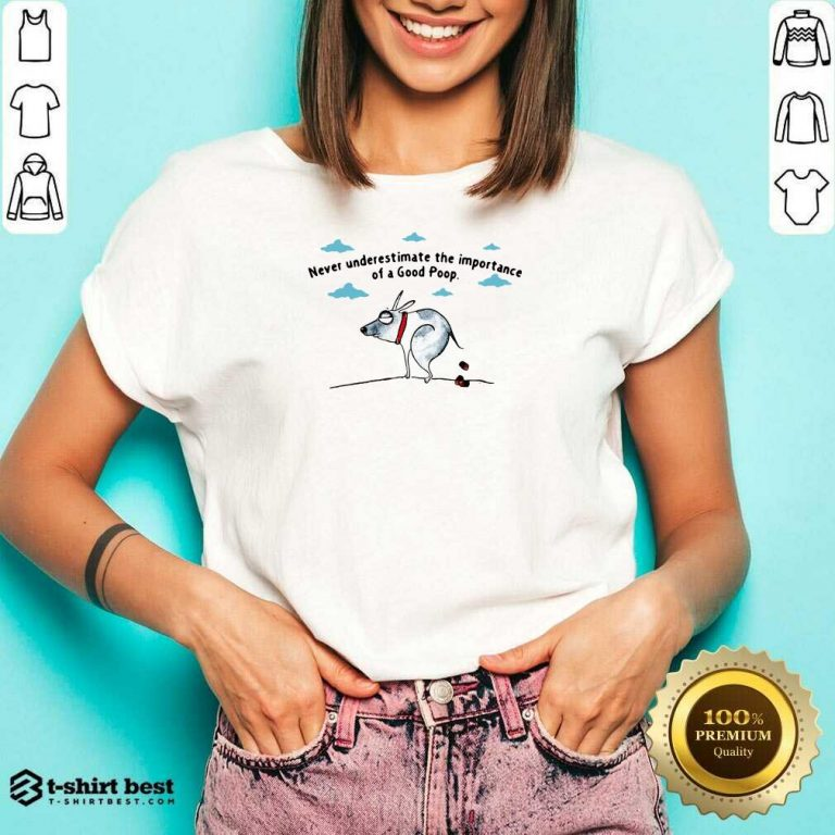 Never Underestimate The Importance Of A Good Poop V-neck - Design By 1tees.com