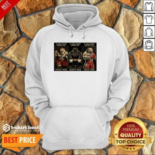 Pitbull Boxing Protect Respect Defeat If They Stand Behind You Hoodie - Design By 1tees.com