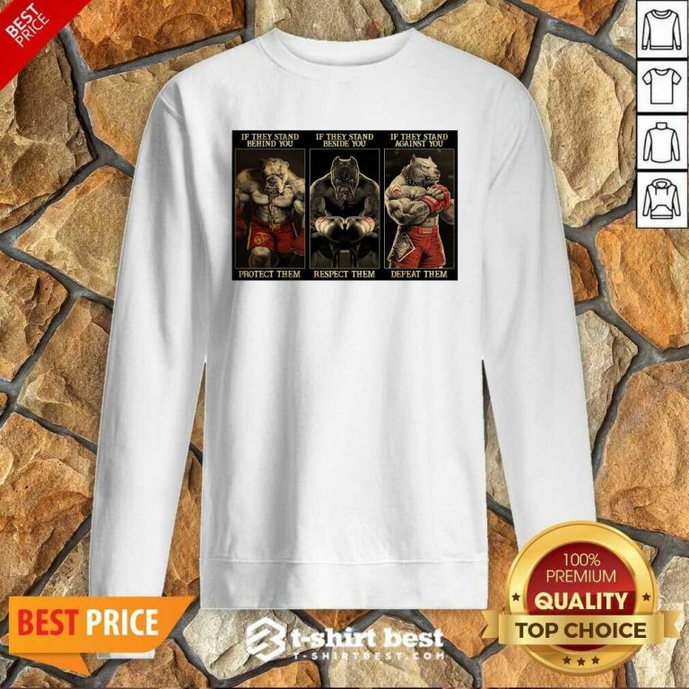 Pitbull Boxing Protect Respect Defeat If They Stand Behind You Sweatshirt - Design By 1tees.com