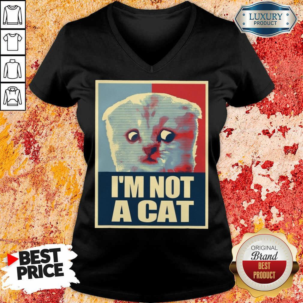I'm Not A Cat V-neck